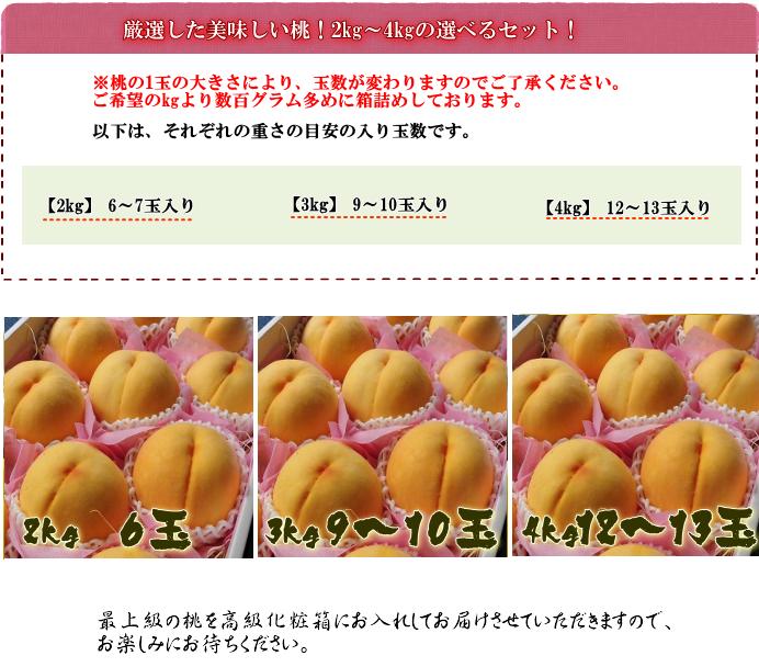 黄金桃kgイメージ