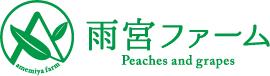山梨の桃|白鳳|白桃通販【雨宮ファーム】美味しさの先へ